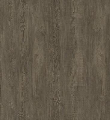 Ecoclick55 - 019, Rustic Pine Taupe - 1